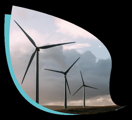 Energia e Innovazione, Foglia con pale eoliche